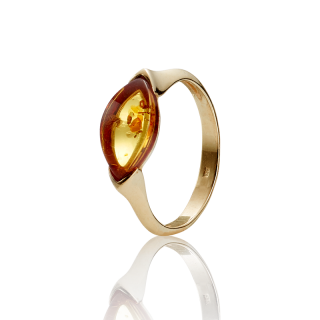 Classic Selection ring in cognac amber and gold