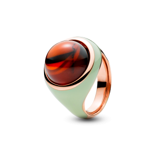 Enlightened Enamel ring in cherry amber and green enamel